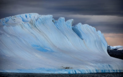 Antarctic Art
