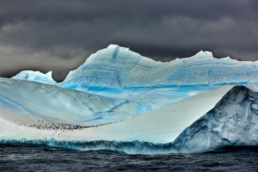 Antarktik-Art006