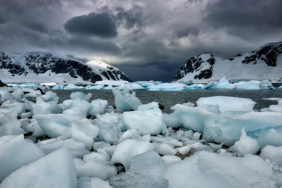 Antarktik-Art059