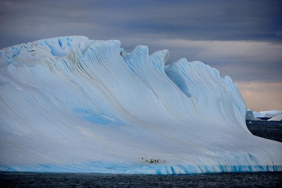 Antarktika_0258