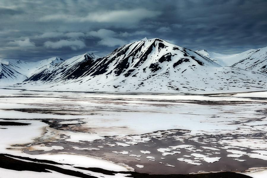 Arcticart029