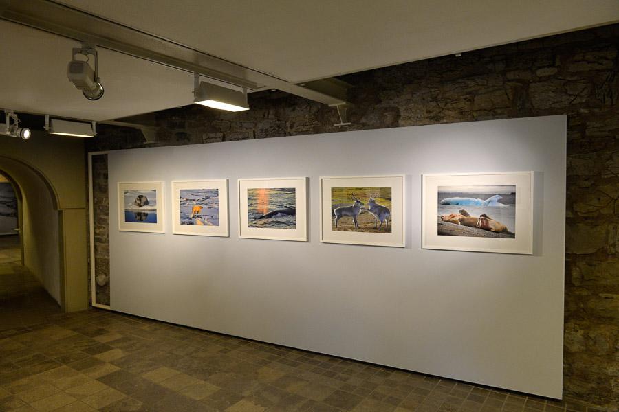 Ausstellung-Reisewelten-2016-015