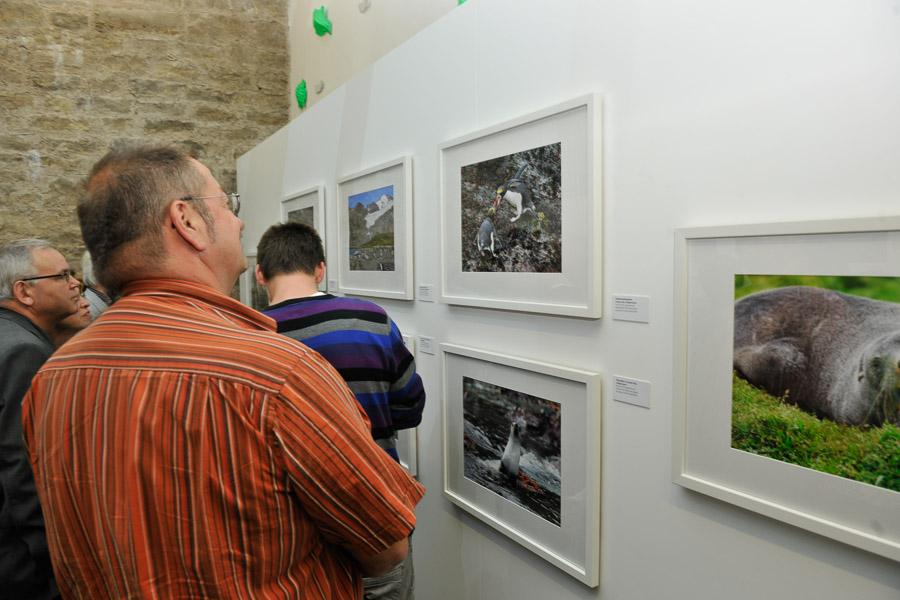 Ausstellung_HFM_06_2011_022
