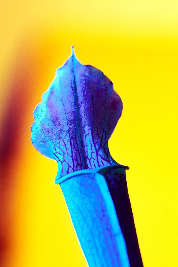 Farbwelt002