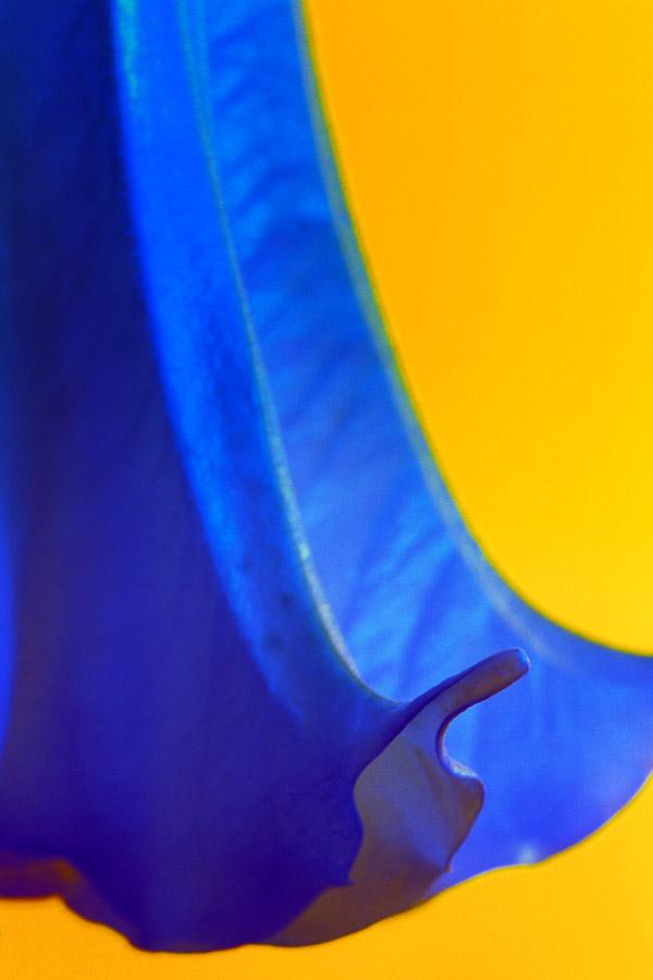 Farbwelt013