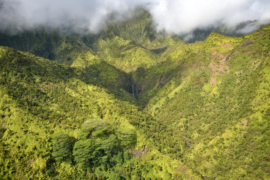 Hawaii-2017-0380