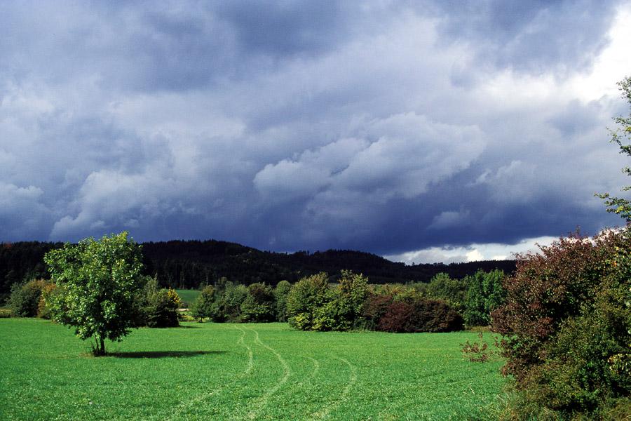 Herbst_Starkholzb