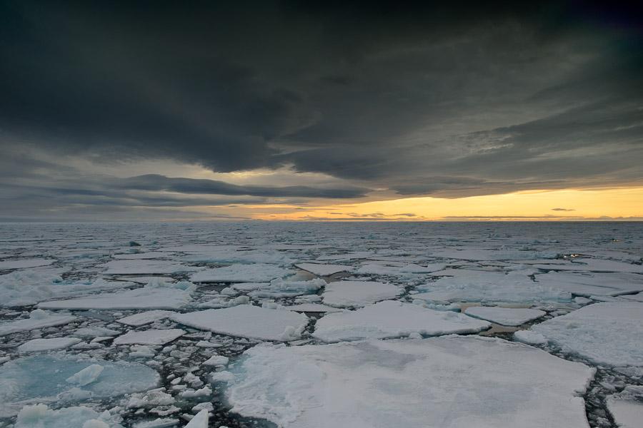 Polar-Quest-2014-0611