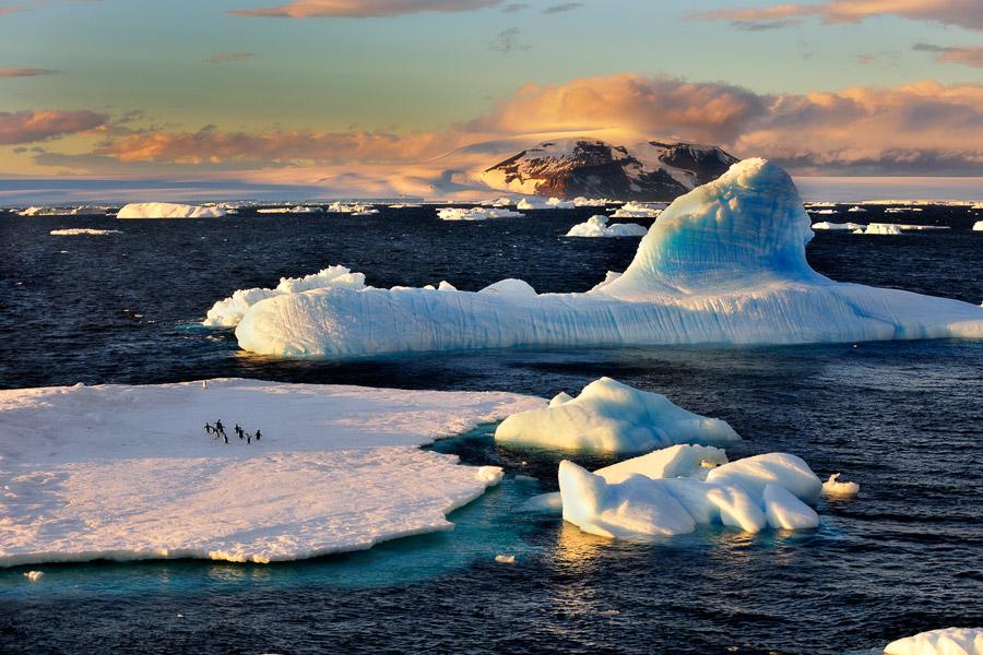 Antarktik-Art031