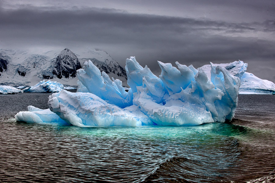 Antarktik-Art049b
