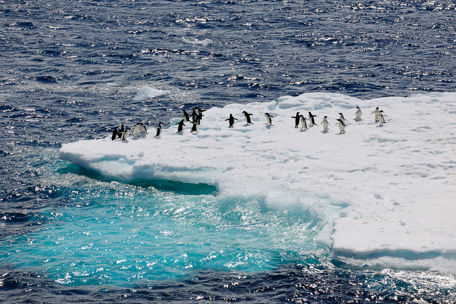 Antarktika_0368