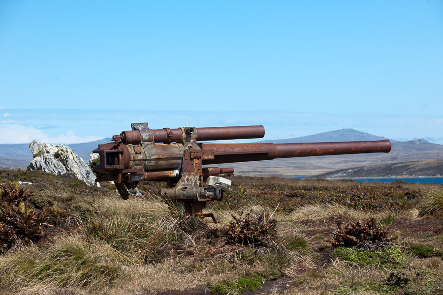 Falkland_0198