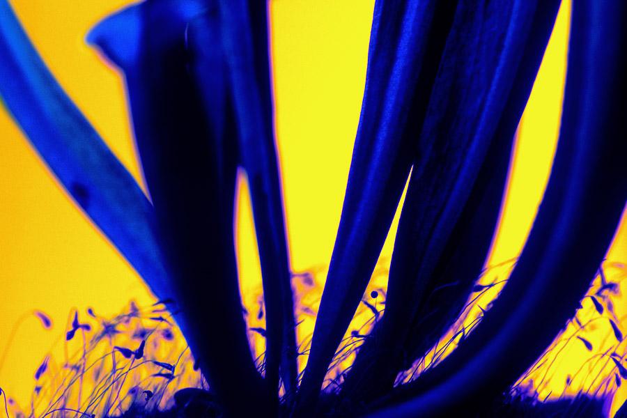 Farbwelt006