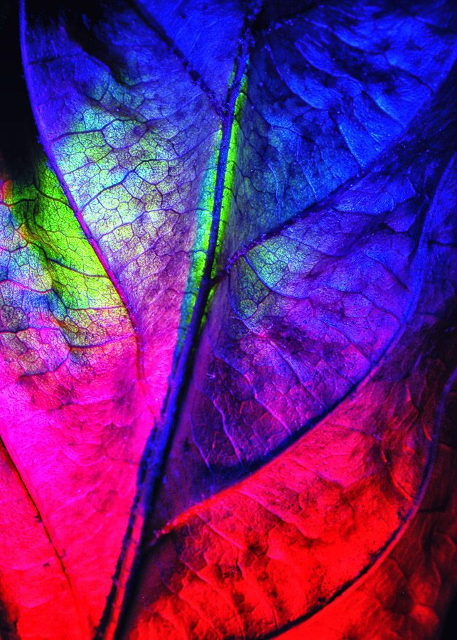 Farbwelt_10_2002_18b