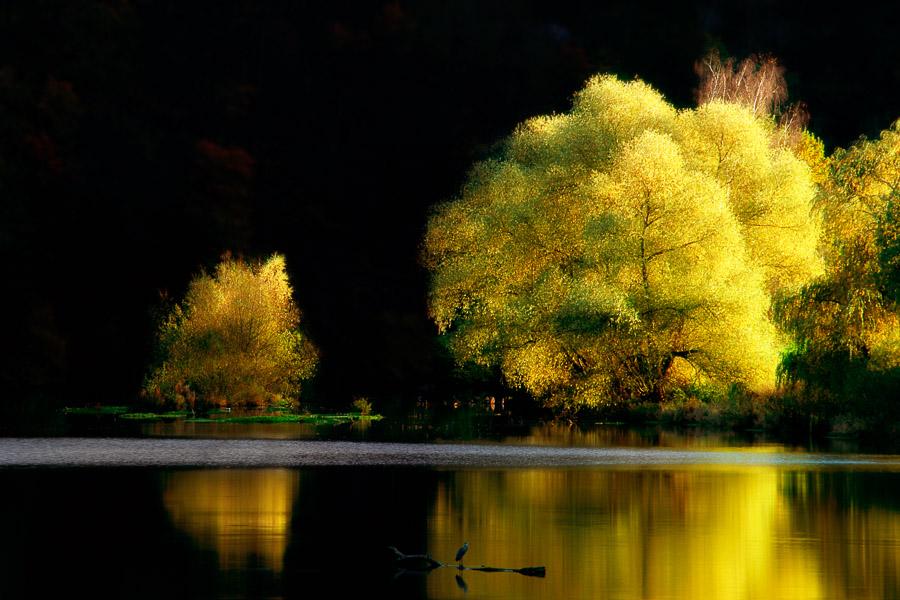 Herbst01_Neu2