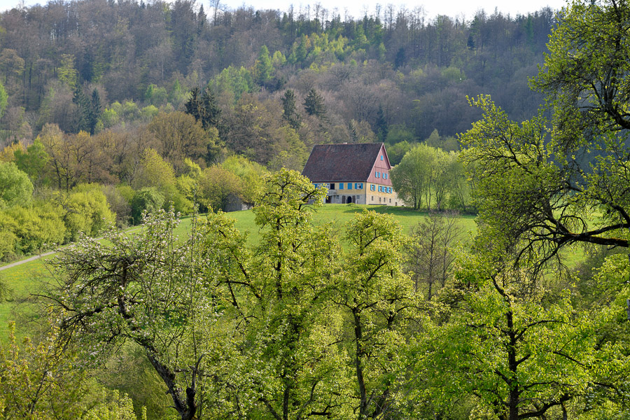 Wackershofen-04-2017-002