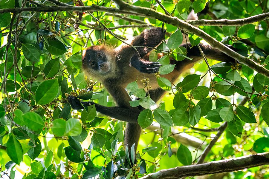 Costa-Rica_0252