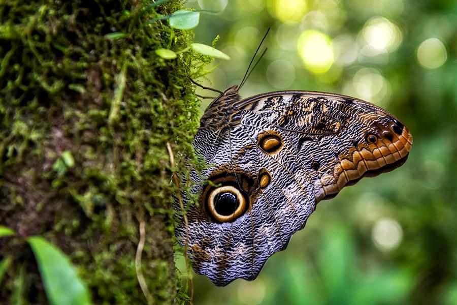 Costa-Rica_0340