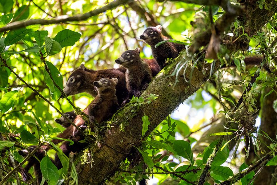 Costa-Rica_0365