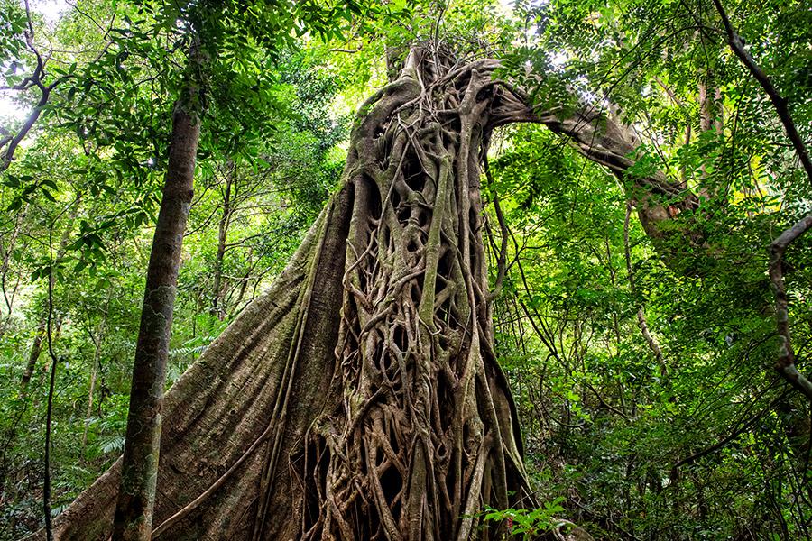Costa-Rica_0447