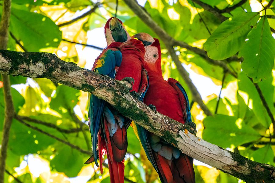 Costa-Rica_0623