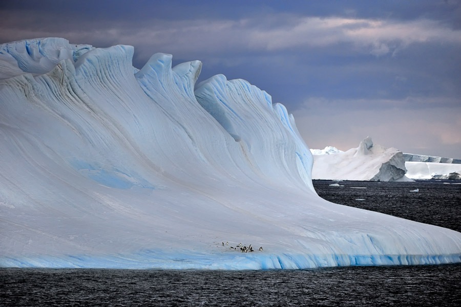 Antarctic-Art-084