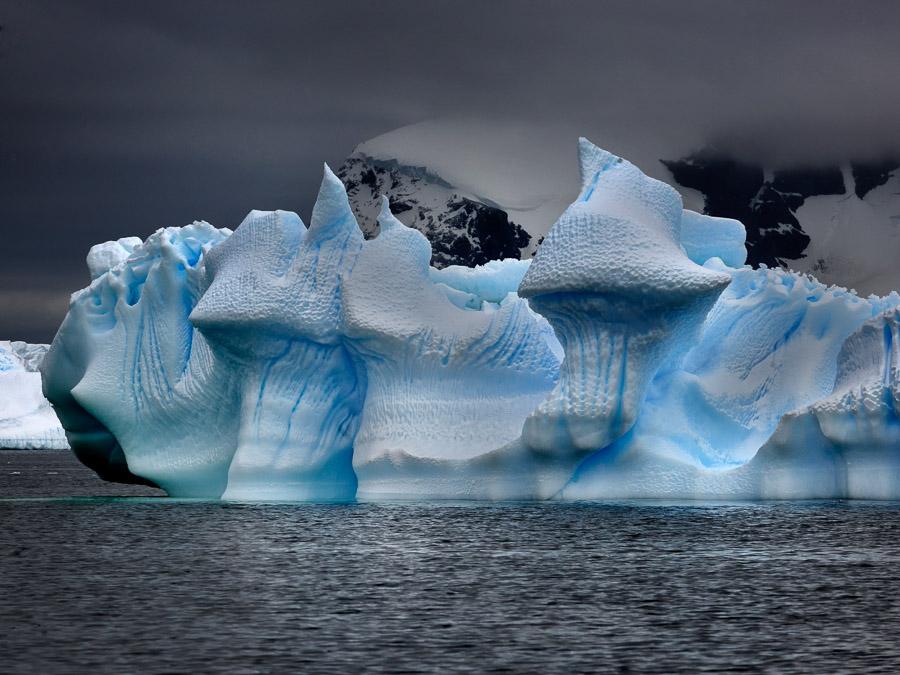 Antarktik-Art046