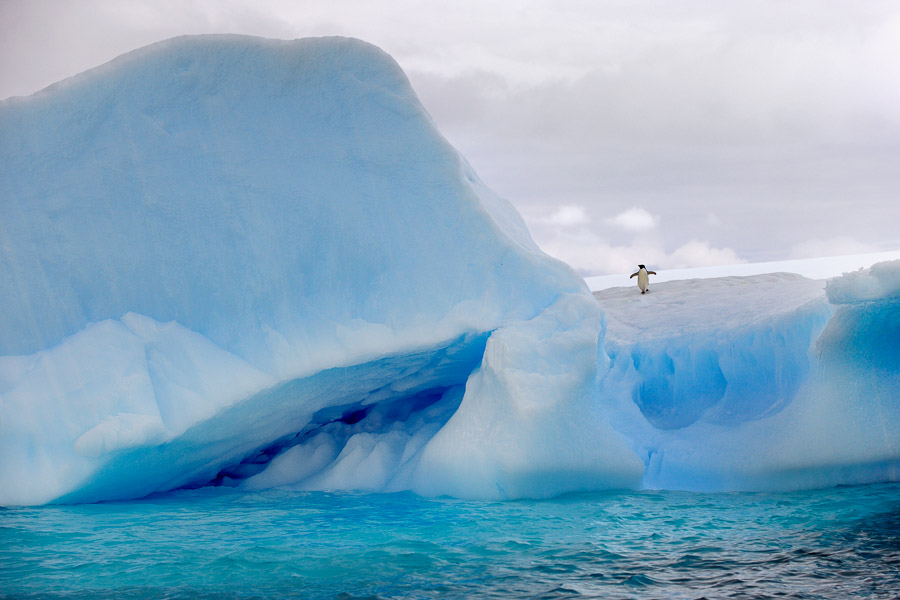 Antarktika_0438