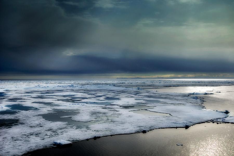 Arcticart026