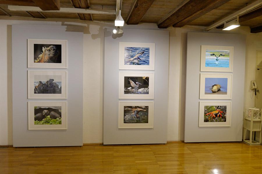 Ausstellung-Reisewelten-2016-008