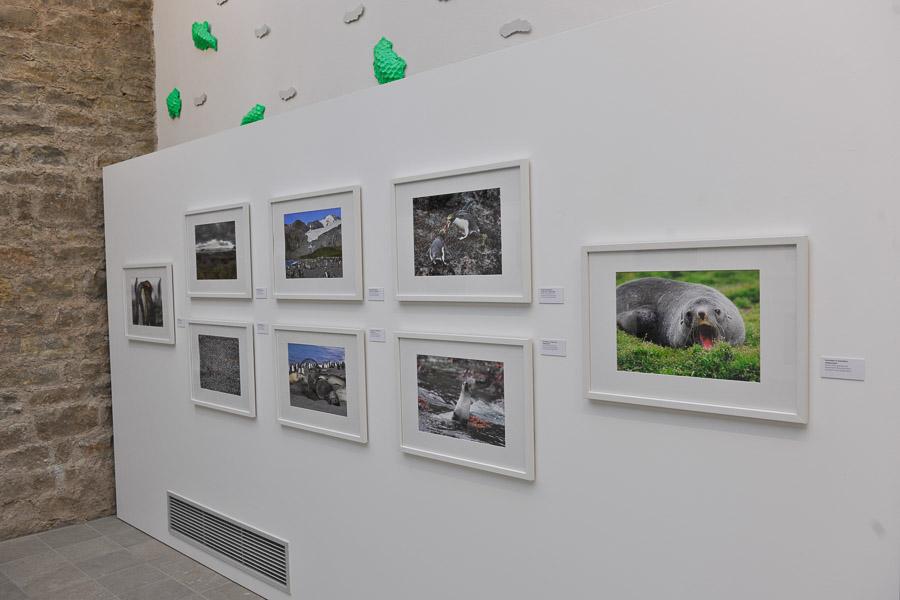 Ausstellung_HFM_06_2011_005
