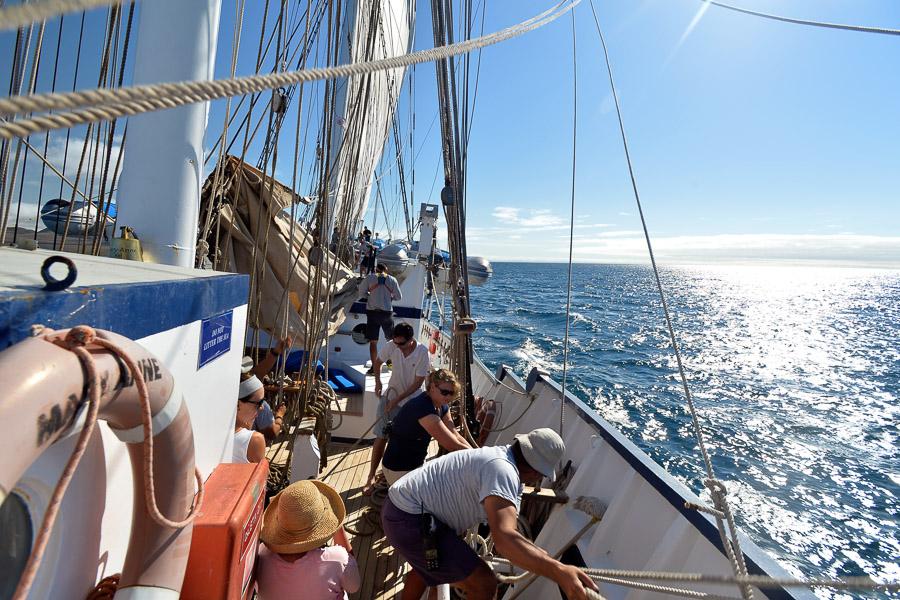 Galapagos_2013_0281