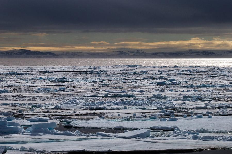 Svalbard_2008_0468