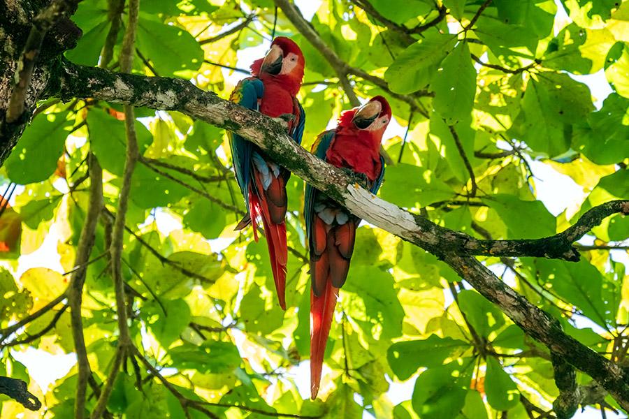 Costa-Rica_0620